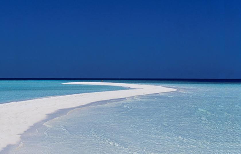 Gasfinolhu Island Resort Contact